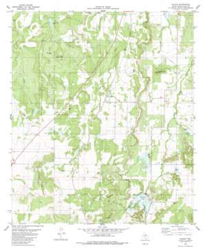 Placid topo map