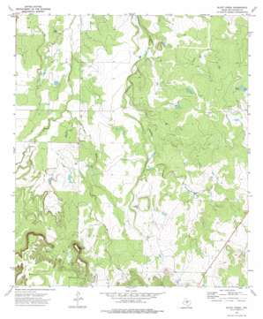 Bluff Creek topo map