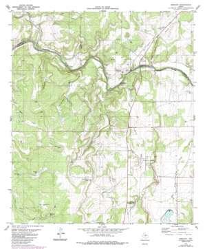 Mercury topo map