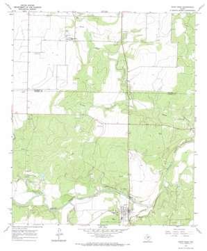 Paint Rock topo map