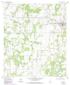 Bangs West topo map