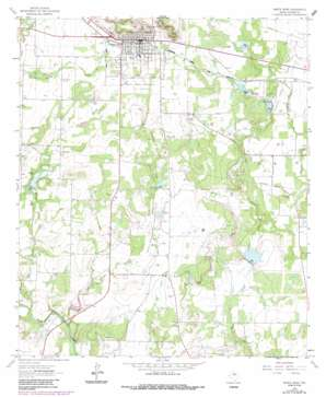 Santa Anna USGS topographic map 31099f3