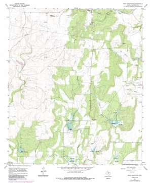 Bead Mountain topo map