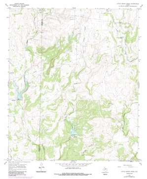 Little Grape Creek topo map