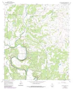 Buffalo Bluff topo map