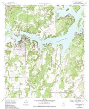Lake Brownwood USGS topographic map 31099g1