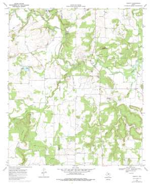 Thrifty USGS topographic map 31099g2