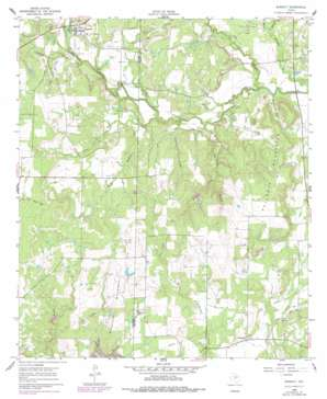 Burkett USGS topographic map 31099h2