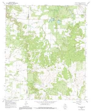 Novice West topo map