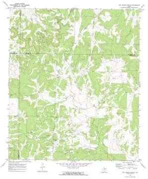 Del Venado Ranch USGS topographic map 31100a1