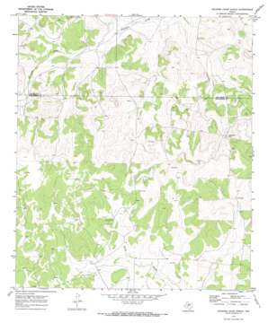 Rocking Chair Ranch topo map