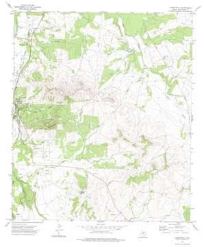 Christoval topo map
