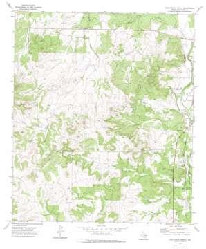Cold Creek Spring topo map