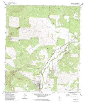 Mertzon topo map