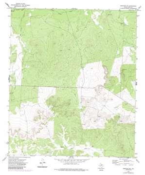Mertzon Sw topo map