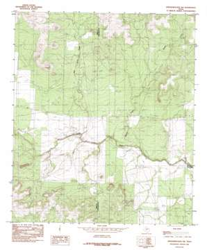 Knickerbocker Nw topo map