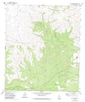 Wallace Draw USGS topographic map 31100d8