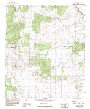 Miles Nw USGS topographic map 31100f2