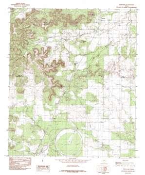 Tennyson topo map