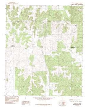 Pecan Mott topo map