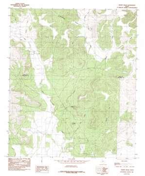 Murph Draw USGS topographic map 31100f5