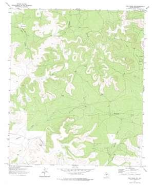 Dog Creek Nw topo map