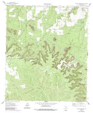 Millican Mountains topo map