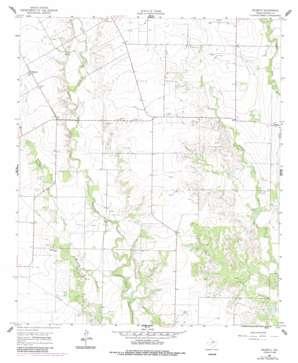 Wilmeth USGS topographic map 31100h1