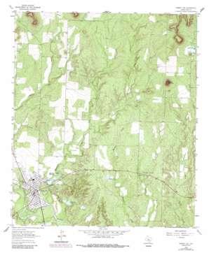 Robert Lee topo map