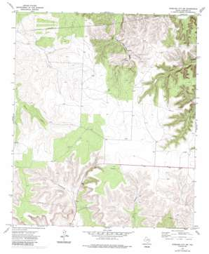 Sterling City Nw topo map