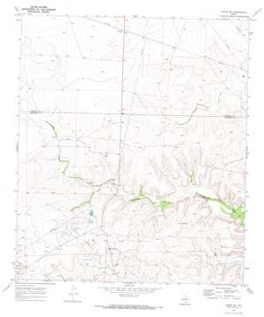 Texon Se topo map