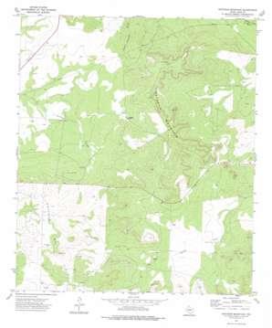 Ketchum Mountain topo map