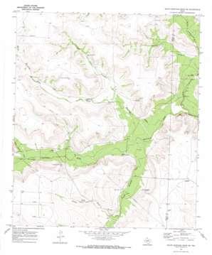 South Mustang Draw Ne topo map