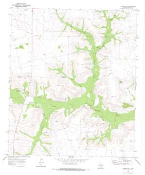 Moore Hill topo map