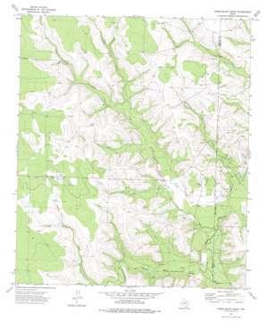 Three Bluff Draw topo map