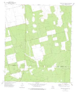 Three Bluff Draw Nw topo map