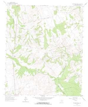 Ballinger Ranch topo map
