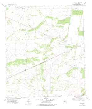 Owego topo map