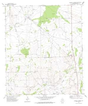 Diamond Y Spring topo map