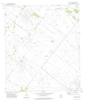 Buena Vista topo map