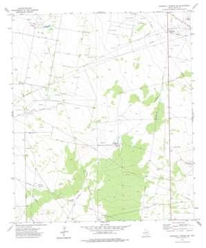 Diamond Y Spring Nw topo map