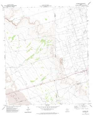 Notrees topo map