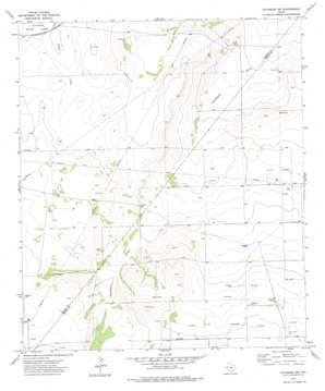 Coyanosa Nw topo map