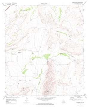Florenzo Hill topo map