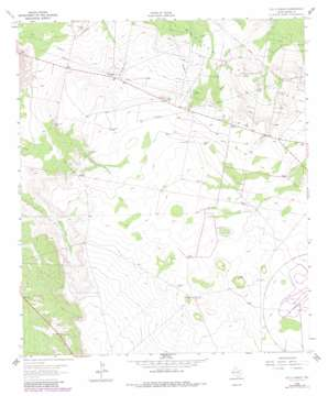 Old X Ranch topo map