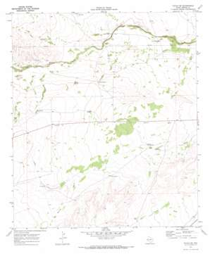 Toyah Sw topo map
