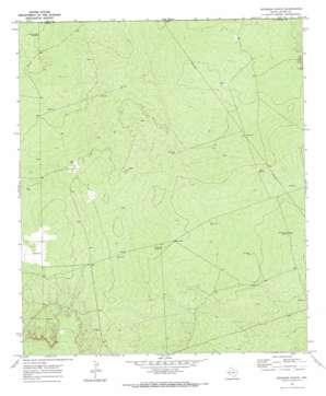 Brunson Ranch topo map