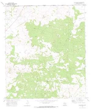 Kyle Ranch topo map