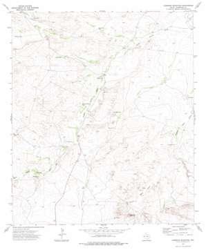 Loneman Mountain topo map