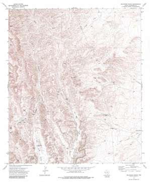 Delaware Ranch topo map
